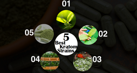 5 best kratom strains