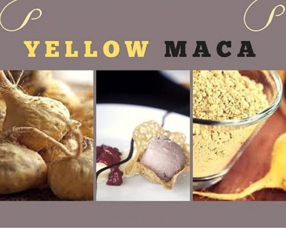 Yellow Maca