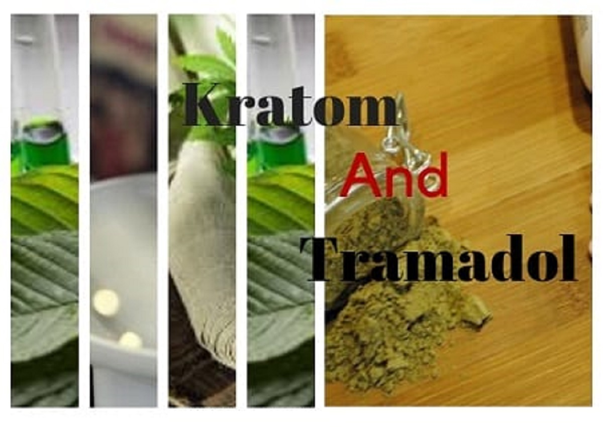 Kratom And Tramadol - Usage - Combination Effects - Withdrawal