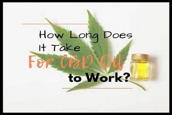 CBD Oil Work