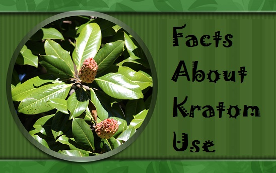 Facts about kratom use
