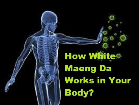 How White Maeng Da Works