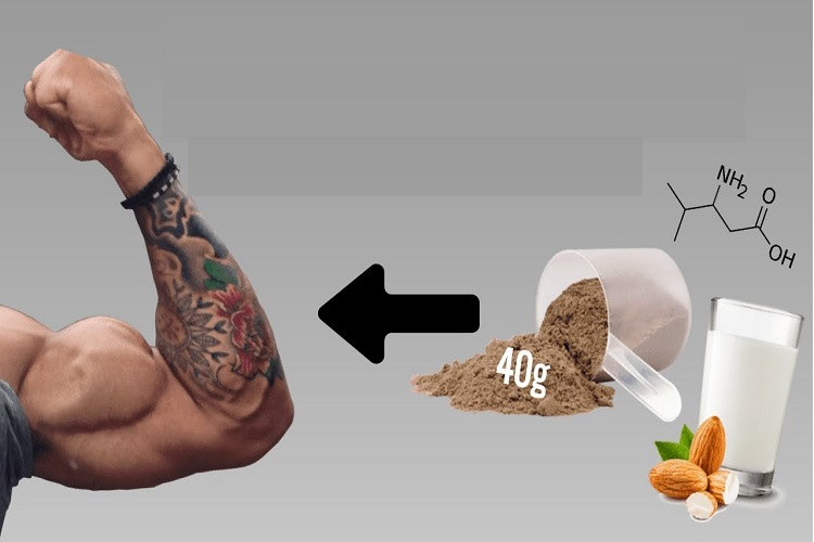 Sarms For muscle mass