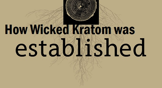 How Wicked Kratom established