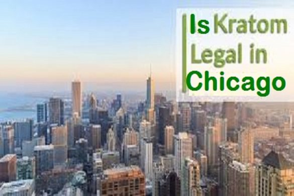 Kratom in Chicago