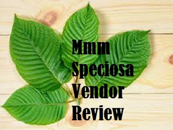 Mmm Speciosa Review
